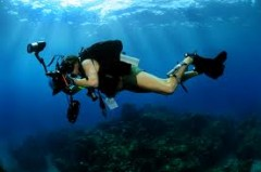 Learn Videography - Dive Phuket Today