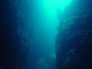 Canyon at Shark Cave Burma - Diving Myanmar